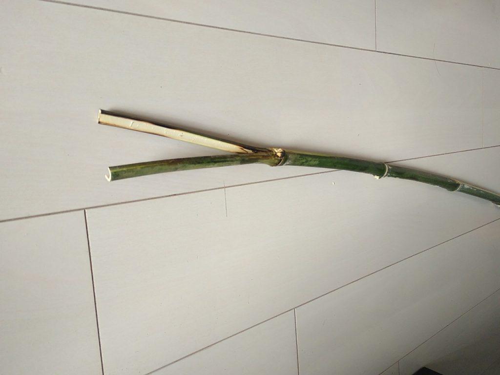 1本ものの竹取り棒
